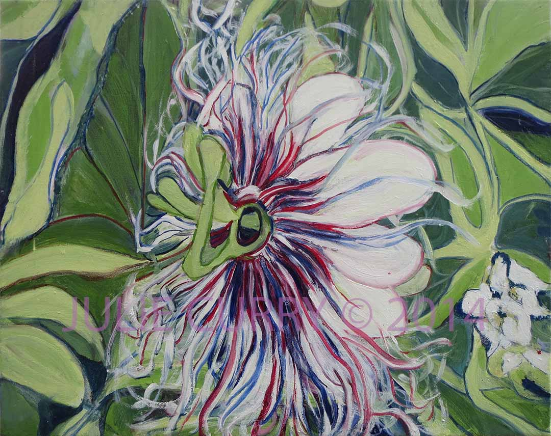 An oil painting portrait of a passion flower by Julie Curry an oil painter
